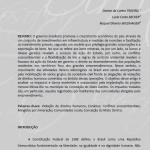 Artigo Conceição